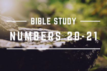 NUMBERS 20-21