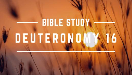 DEUTERONOMY 16