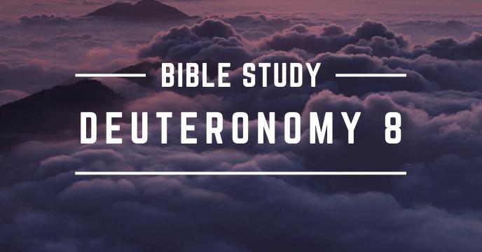 DEUTERONOMY 8