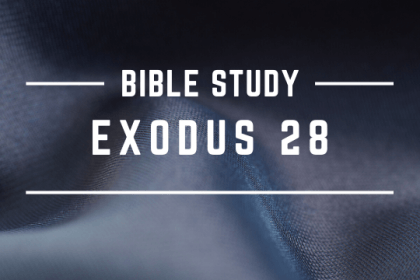 EXODUS 28