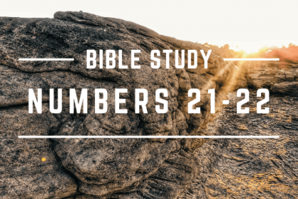 NUMBERS 21-22