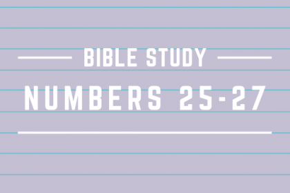NUMBERS 25 - 27