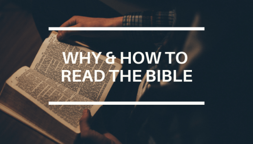 WHY & HOW TO READ THE BIBLE