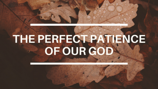THE PERFECT PATIENCE OF OUR GOD