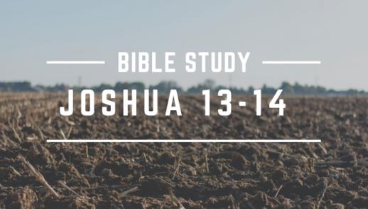 JOSHUA 13-14